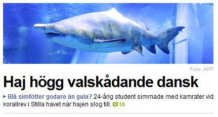 Inspärrad haj